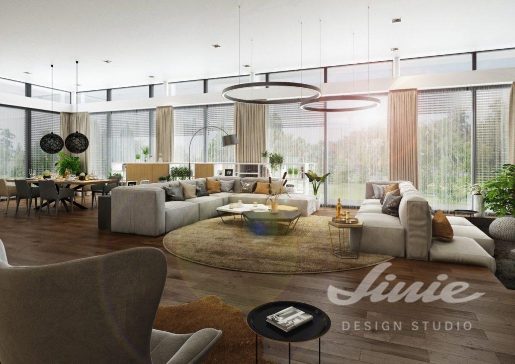Inspirace pro obývací pokoj s šedými sedacími soupravami a pohovkami