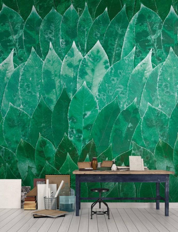 tmavě zelená fototapeta listy