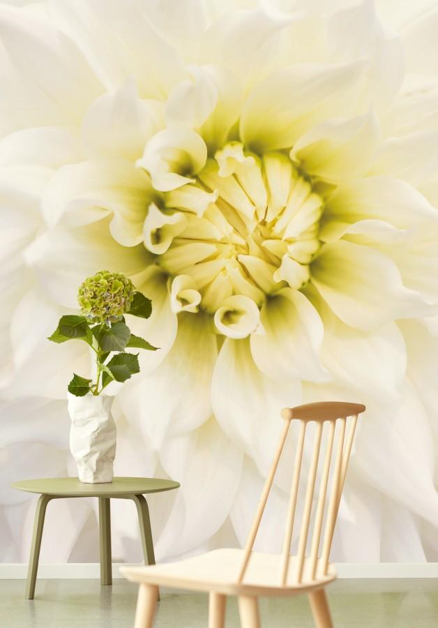 Nástěnná tapeta květu, kulatý stolek s květinou ve váze a židle
